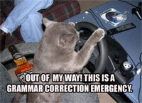 Out of My Way! This is a Grammar Correction Emergency! lolcat