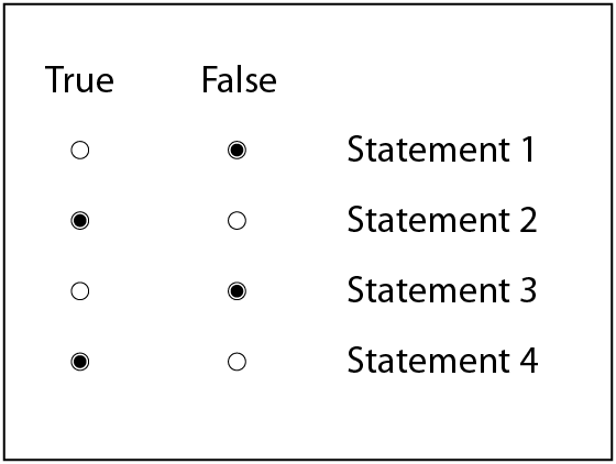 Either/Or Statements question type